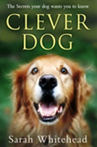 Clever Dog cover CDC copy